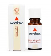 Organic Ginger Essential Oil (Meadows Aroma) 25ml